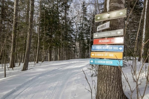 A selection of trails to choose from at the Paul Smith's VIC. Photo by Mike Lynch