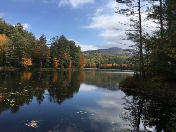 Hammond Pond