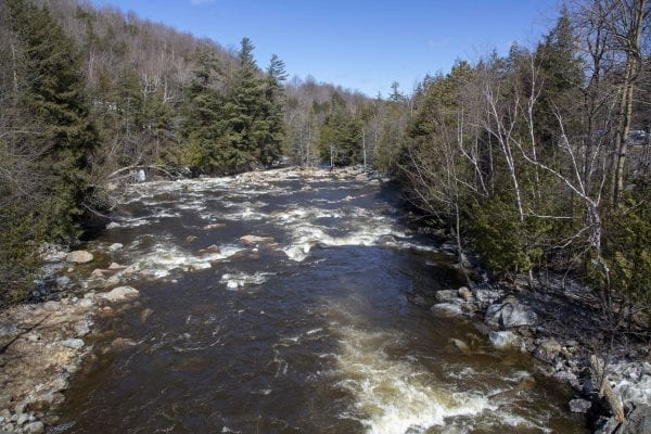 Rapids on the West Branch of the Ausable River near Whiteface Mountain. Photo by Mike Lynch