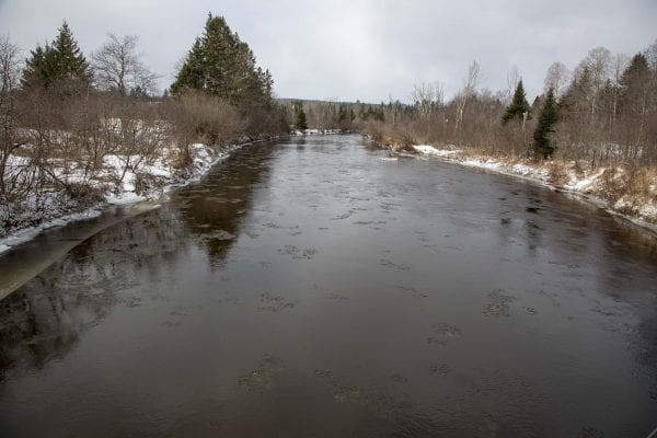 Open water on the West Branch of the Ausable River. Photo by Mike Lynch