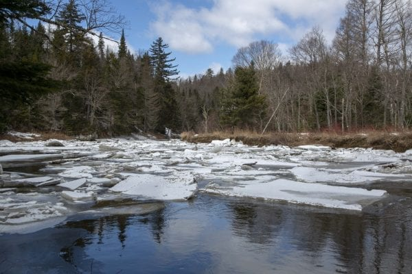 Ice builds up on the West Branch of the Ausable River April 1. Photo by Mike Lynch