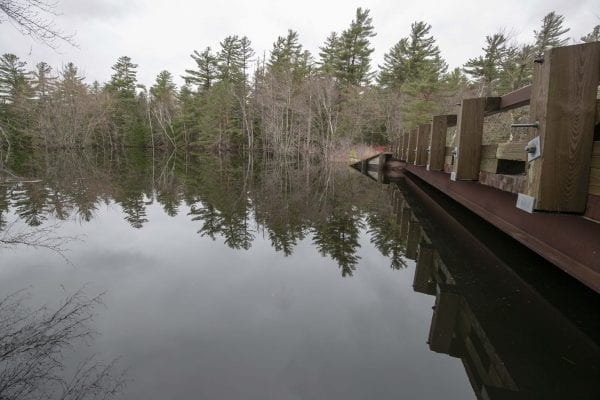 A view of the flooded Stony Creek from the bridge on Coreys Road. Photo by Mike Lynch