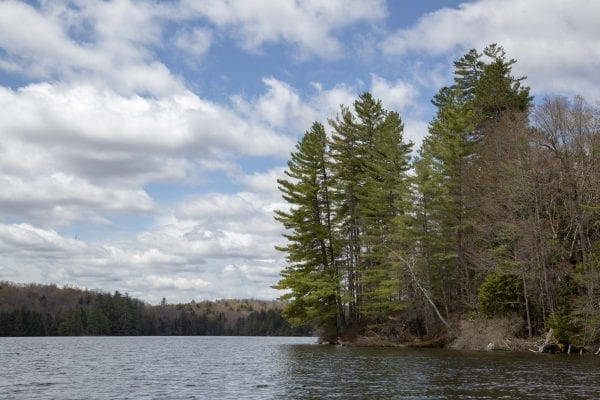 Hoel Pond is located just outside the St. Regis Canoe Area in the northern Adirondacks. Photo by Mike Lynch