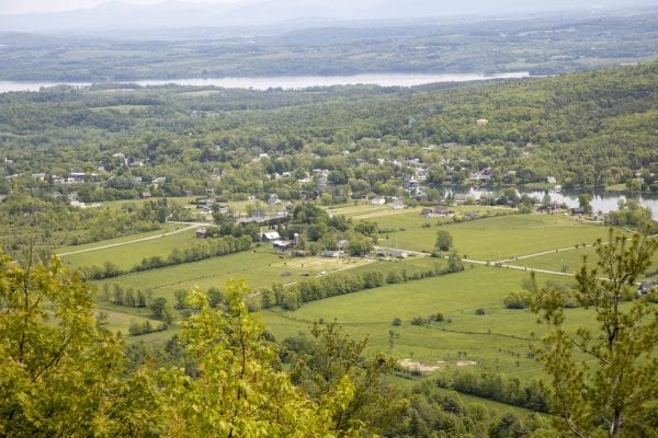 Scenes from a hike up Cook Mountain in Ticonderoga on June 1. Photo by Mike Lynch