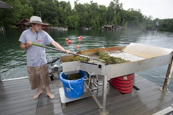 A member of A.E. Commercial Diving Services harvests milfoil on Lake George. Photo by Mike Lynch
