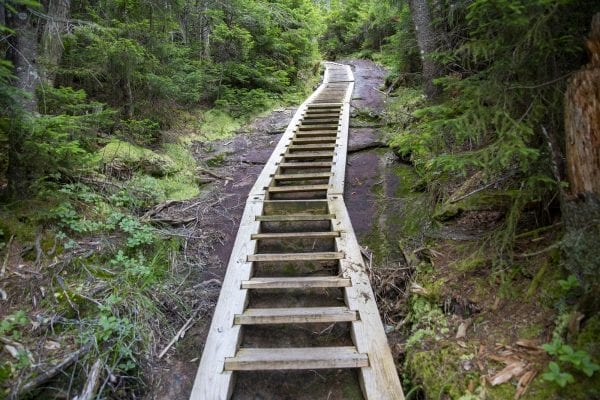 Ladders line the steep section of trail on the trail up Mount Colden from Lake Colden. Photo by Mike Lynch