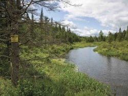 Big Brook through Whitney property