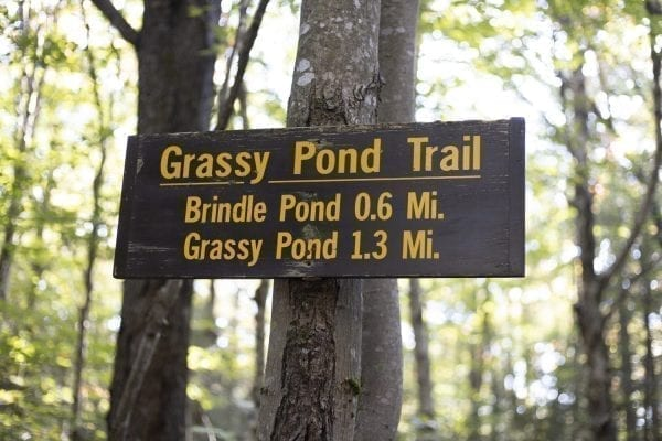 The Grassy Pond Trail sign. Photo by Mike Lynch