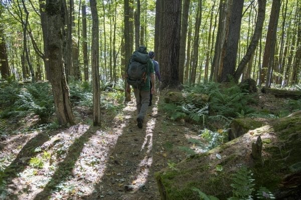 Explorer Publisher Tracy Ormsbee and Sam Eddy walk through the woods near Wolf Pond in the Five Ponds Wilderness in September. Photo by Mike Lynch