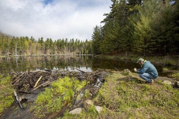 Explorer editor Brandon Loomis takes a photo of a beaver pond in Wilmington in May. Photo by Mike Lynch