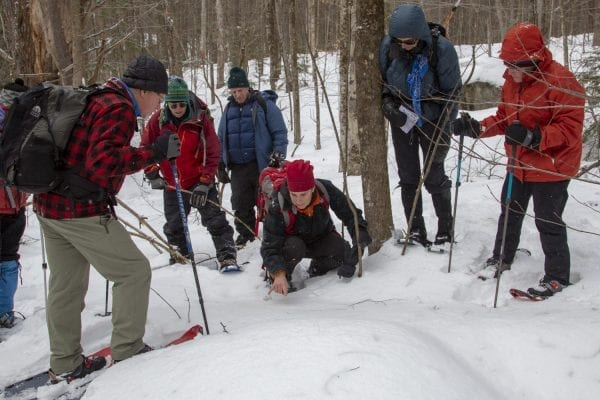 Elizabeth Lee checks out some animal tracks during a guided trip near Poke-O-Moonshine Mountain in the eastern Adirondacks in January 2019. Photo by Mike Lynch