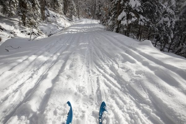 Conditions were good on the Jackrabbit Trail near Whiteface Inn Road in Lake Placid on January 7, 2020. Photo by Mike Lynch