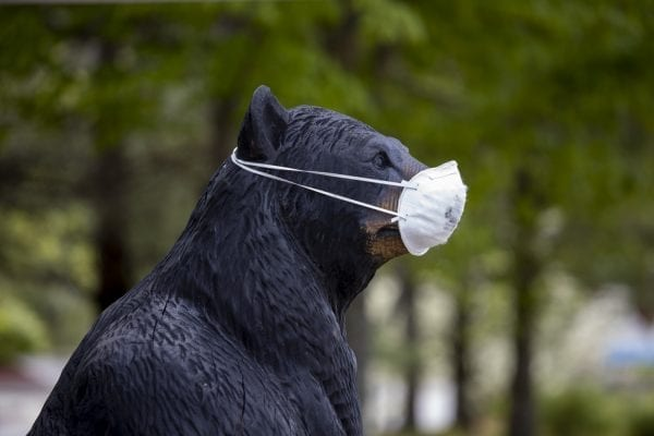 Business owners throughout the Adirondacks masked up their bears, like this one in Lake Placid, this spring and summer. Photo by Mike Lynch