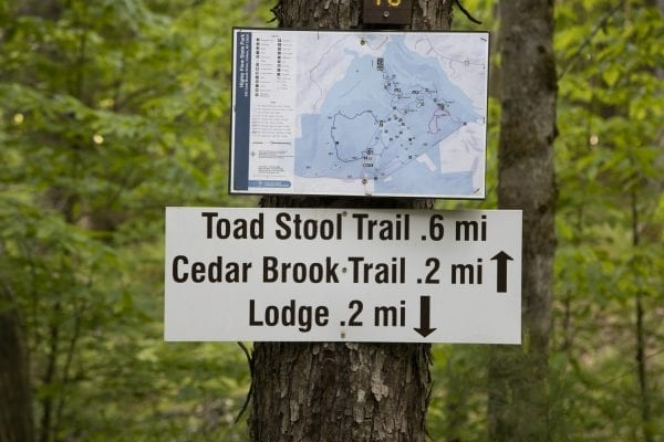 Trail sign at Higley Flow State Park. Photo by Mike Lynch