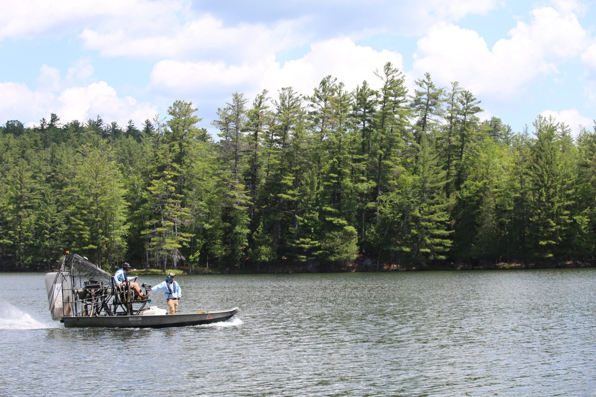 Herbicide for Eurasian watermilfoil
