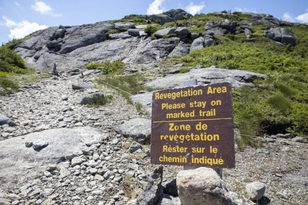 The 5,344-foot Mount Marcy, the tallest mountain in New York, continues to be a big draw for hikers during the pandemic. On Saturday, July 18, Explorer multimedia reporter Mike Lynch hiked the mountain, documenting the scene along the way. The photo gallery above contains images from that trip.