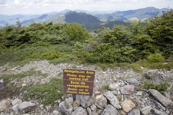 Trail work on the 5,344-foot Mount Marcy, the tallest mountain in New York. Photo by Mike Lynch