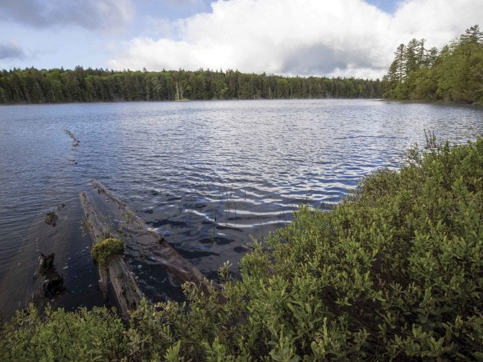 lakes survey