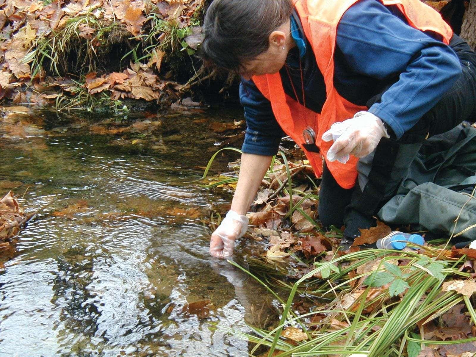 Western Adirondack Stream Survey