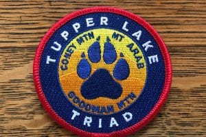 Dogs on a mission in Tupper Lake