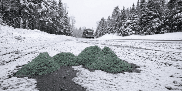 Water reporter Ry Rivard focused on issues related to road salt throughout 2020. This pile of salt was captured in a parking area along Route 73 near Cascade Lakes. Photo by Mike Lynch