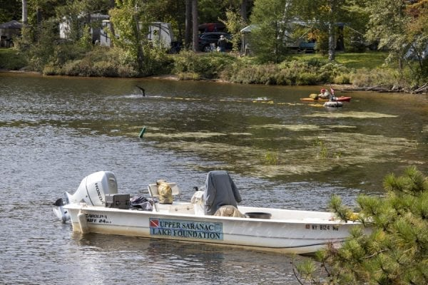 The Upper Saranac Foundation has worked to remove milfoil from the waters within Fish Creek Pond Campground in recent years. Photo by Mike Lynch
