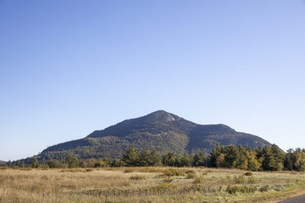 Catamount Mountain stands out on the horizon. Photo by Mike Lynch