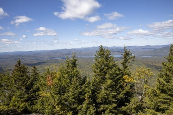A few from the summit of Catamount Mountain. Photo by Mike Lynch
