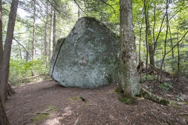 A large glacial erratic boulder at the Newcomb AIC. Photo by Mike Lynch
