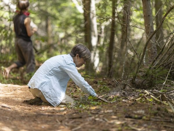 Participants became immersed in the forest by using their senses. Here, guide Helen Gibbens touches some plants along the trail. Photo by Mike Lynch