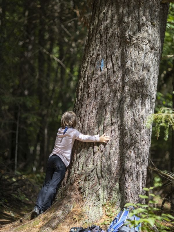 Sophia Kite hugs a large tree, experiencing the forest through the sense of touch. Photo by Mike Lynch