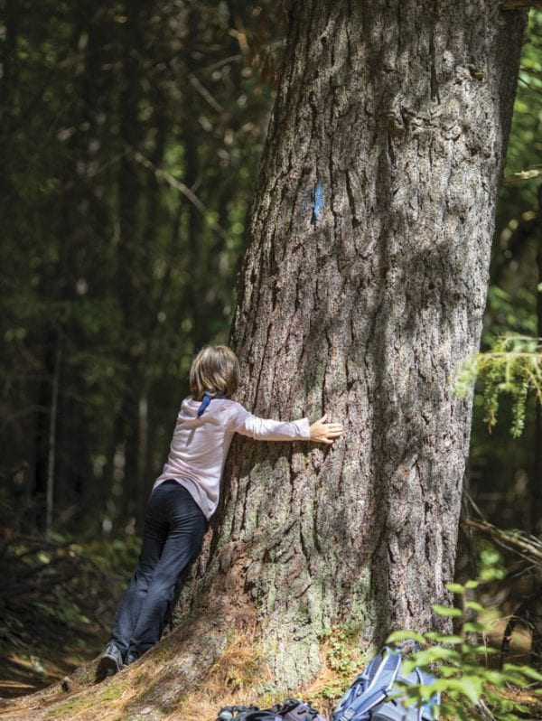 Sophia Kite hugs a tree during a forest bathing exercise this summer at the Paul Smith's College VIC. Photo by Mike Lynch