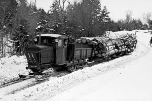 Park logging lore