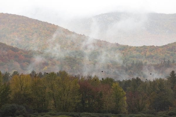 Fog lifts off a forest in Keene in late September. Photo by Mike Lynch