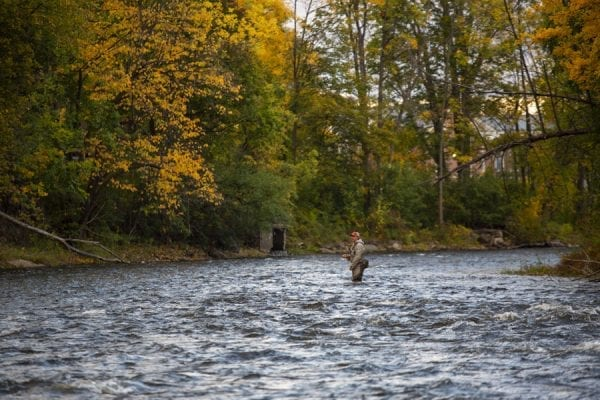 Anglers try to catch salmon as they move upstream on the fast moving Saranac River. Photo by Mike Lynch