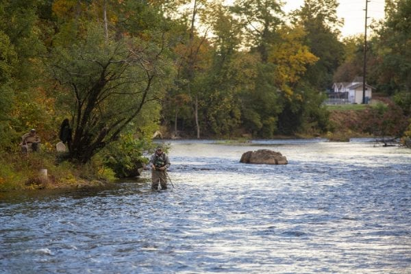 An angler wades into the Saranac River, hoping to catch a salmon. Photo by Mike Lynch
