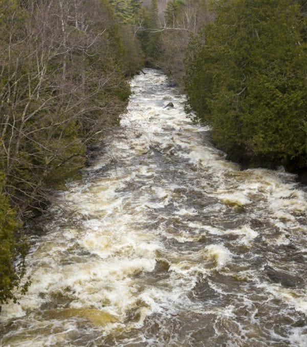 The Saranac River below Union Falls Dam continues as rapids, then settles out into slower, flat water, before becoming rapids again. Photo by Mike Lynch