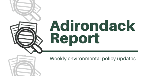 Adirondack report logo