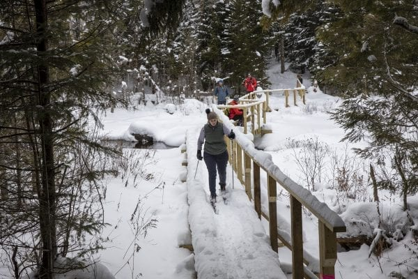 A skier makes her way along a new bridge on the ski trail. Photo by Mike Lynch