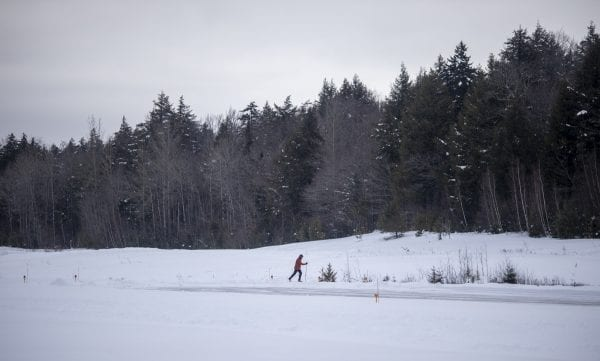 Explorer editor Brandon Loomis skis the final stretch of the trail. Photo by Mike Lynch