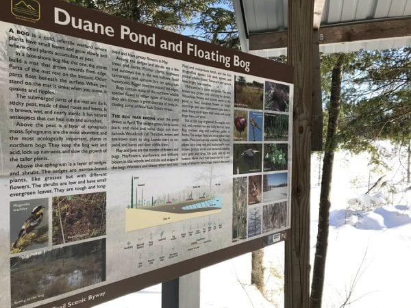 Duane Pond