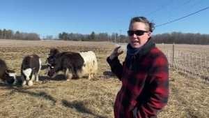 Yakkin' about yaks