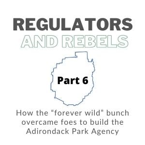 regulators and rebels logo