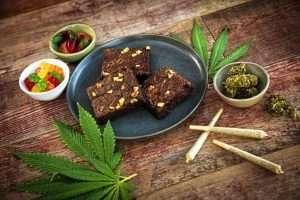 Cannabis in the Adirondacks: A natural economic high?