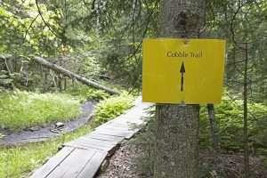 Popular Lake Placid trail to get new start