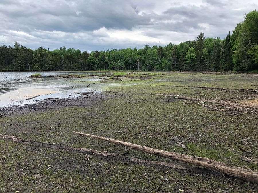 Hitchens Pond