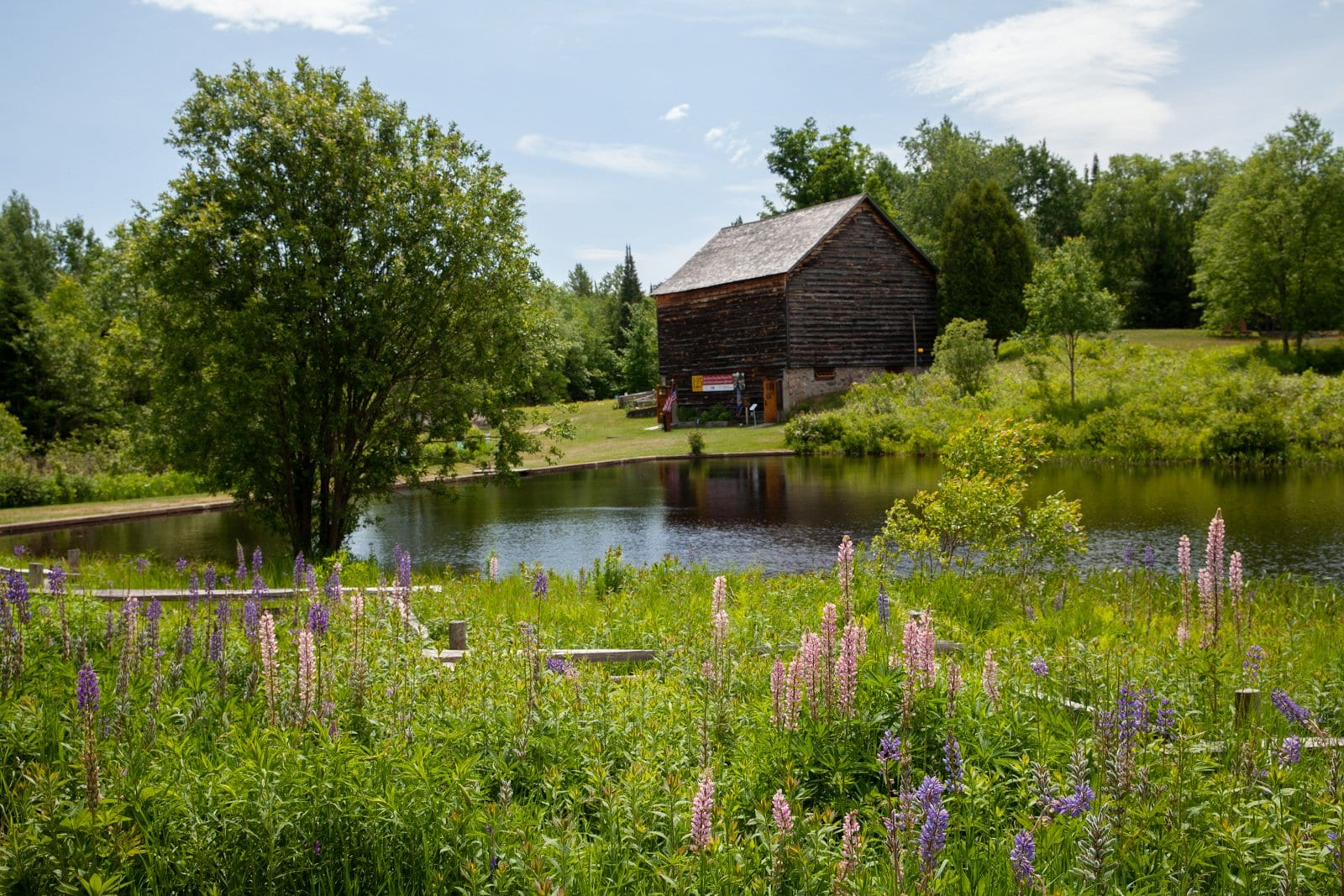 The barn and pond at John Brown Farm State Historic Site.