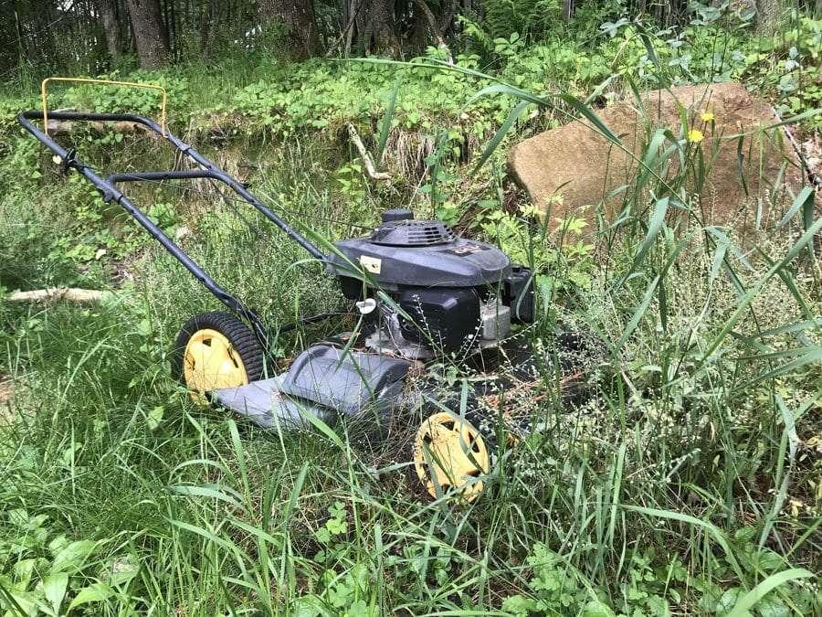 Lawnmower in tall grass.