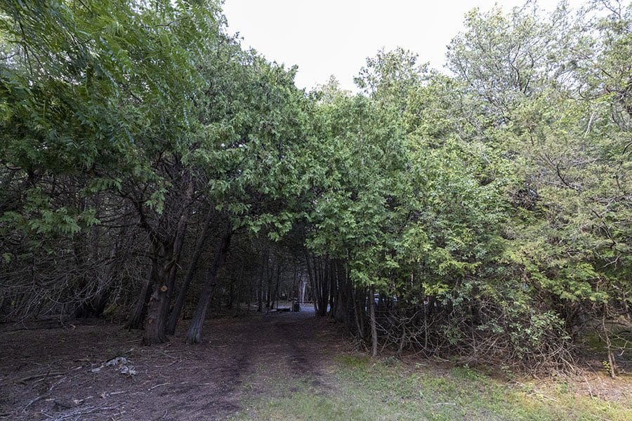 Essex Quarry Nature Preserve in Essex, N.Y.