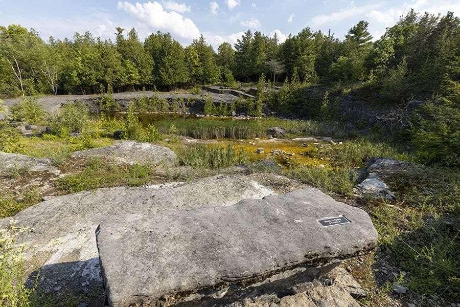Essex Quarry Nature Preserve